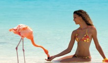 Aruba and Canada in a single trip, only €478!